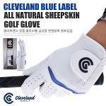 [CLEVELAND] 클리브랜드 정품 블루라벨 천연양피 골프장갑