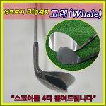 [KAIDIDA] Whale 어프로치 빅웨지