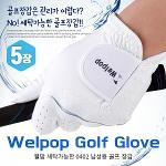[카시야] 웰팝 세탁가능 0402원단 기능성 남성 골프장갑 5장