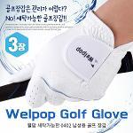 [카시야] 웰팝 세탁가능 0402원단 기능성 남성 골프장갑 3장