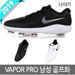 2019 나이키 베이퍼 프로 남성 골프화