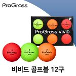 ProGrass 19 VIVID 비비드 골프볼 골프공 12구 2피스